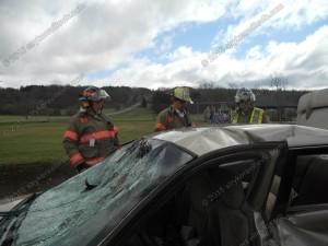 Auto Training (14)
